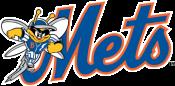 Binghamton-Mets