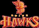 Boise Hawks are In Bloom with St.Luke's Children's Hospital