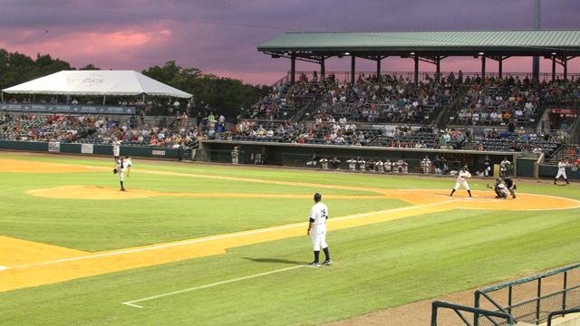 CharlestonRiverDogs_2014-07-14