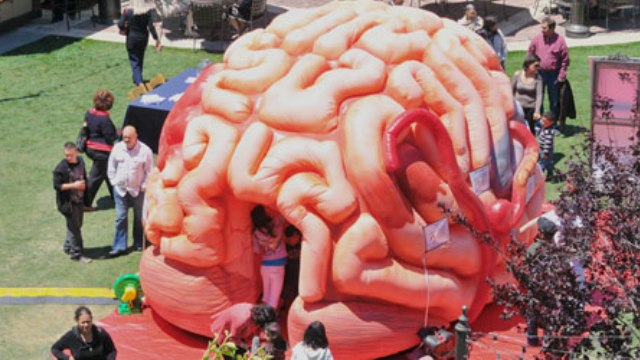 See MEGA Brain at Neuroscience Group Field at Fox Cities Stadium on Friday, June 27!