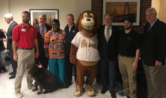 RiverDogs, Fox Music Partner for Piano Grand Unveiling at MUSC Health University Hospital